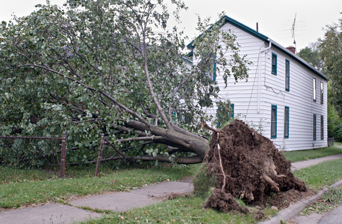 Restore Your Property After a Storm